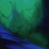 FRETバイオイメージング(蛍光共鳴エネルギー移動のマクロ観察)