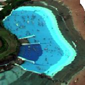 プール中の人間抽出(航空撮影)